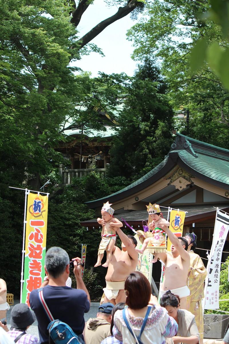 白旗-神社---H28泣き相撲(瑶子)-009