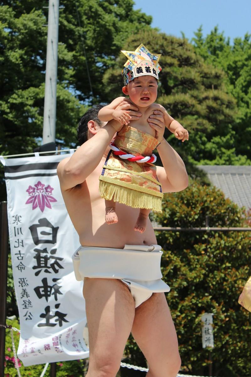 白旗-神社---H26泣き相撲2-018