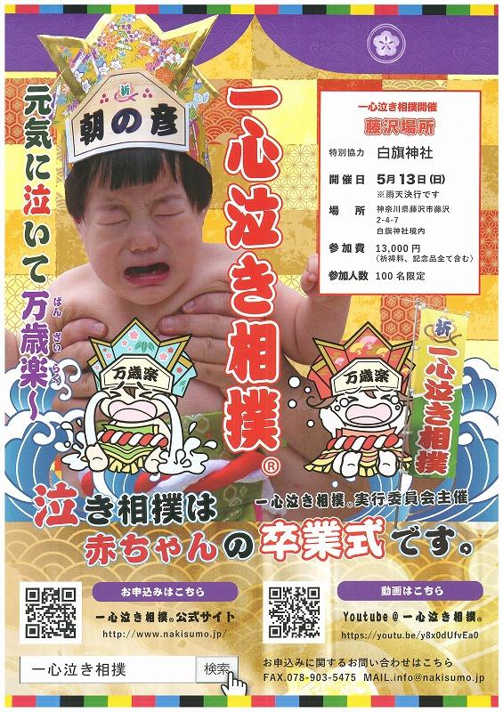 泣き相撲チラシH30
