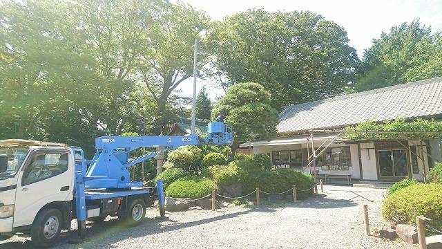 樹木の剪定は三觜建設さんに連日、ご奉仕頂いております。
