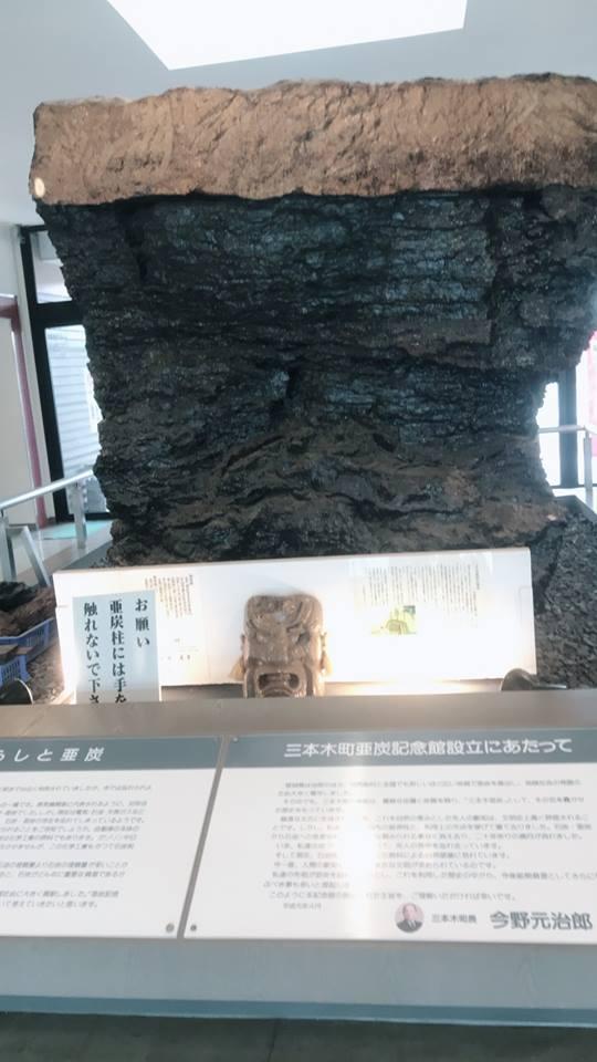 亜炭の展示