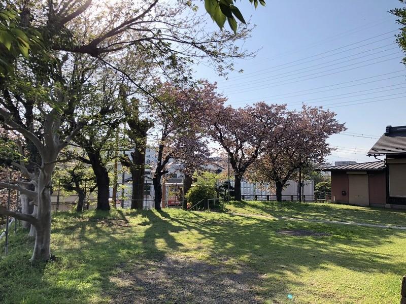 s-石川諏訪神社 (3)
